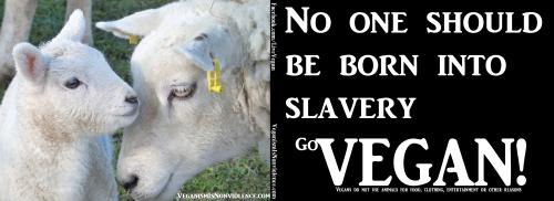 born into slavery1