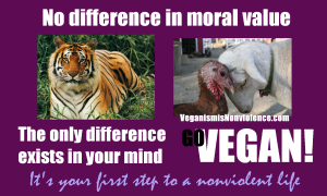 no moral difference