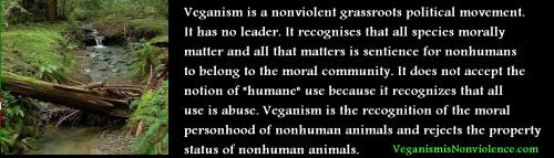 what is veganism