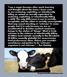 dan c veganism