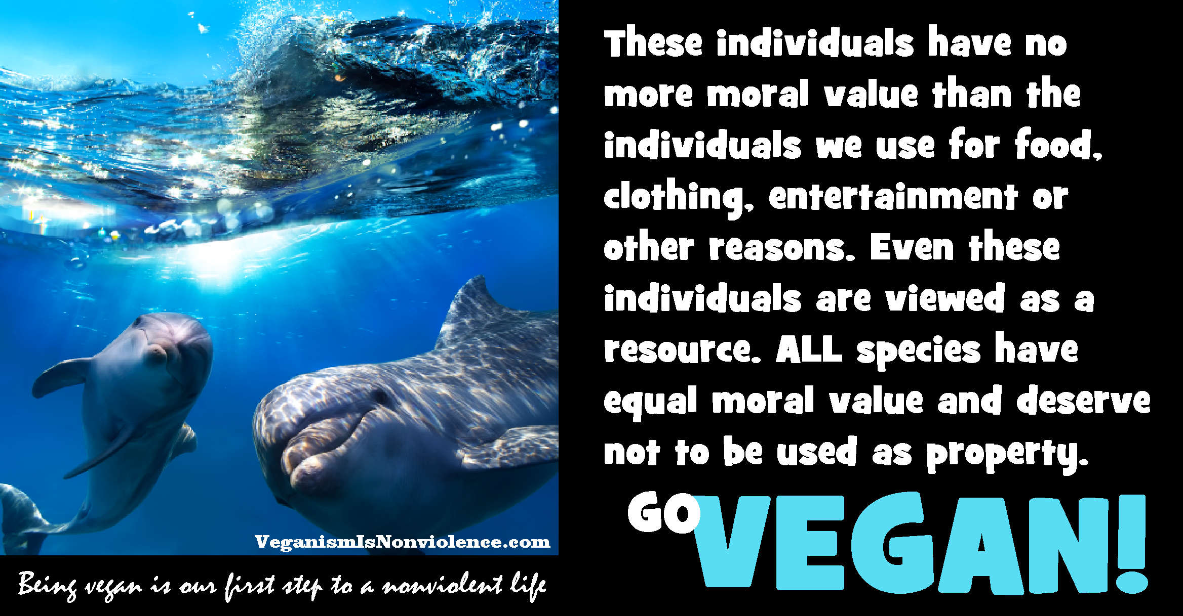 animals including human animals have equal moral value. All animals ...