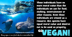 All animals including human animals have equal moral value. All animals deserve at least one right-the right not to be used as property.