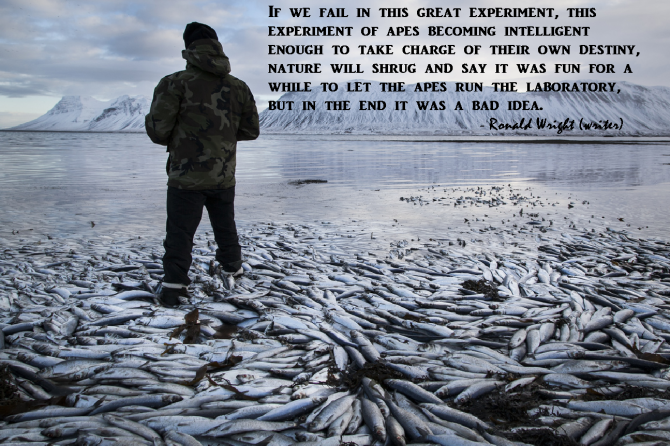 http://veganismisnonviolence.files.wordpress.com/2013/02/failed-experiment.png