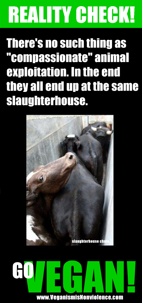 """""""Free range"""" """"organic"""" """"factory farmed"""" etc - In the end the all end up in the same slaughterhouse."""