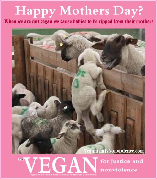 Happy Mothers day?