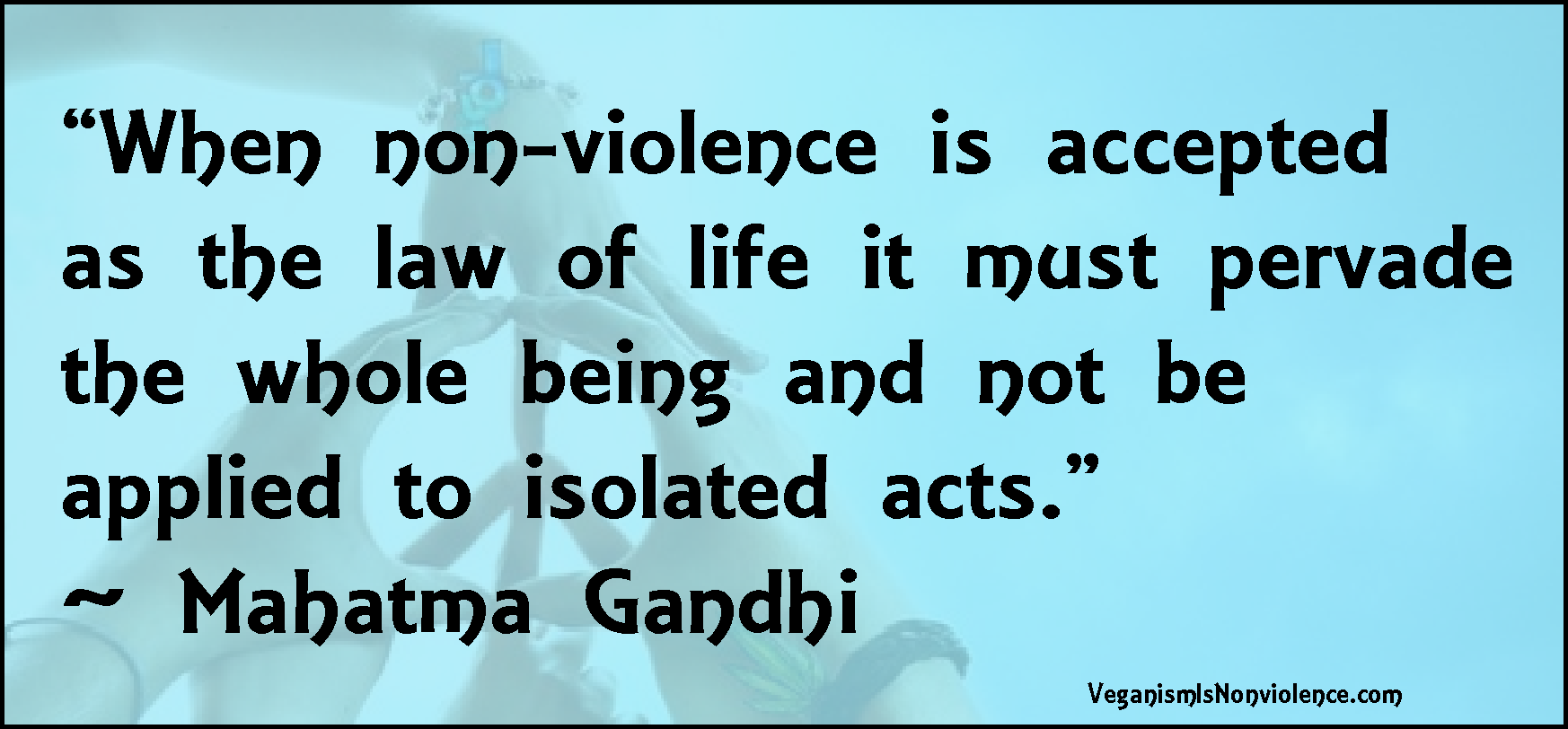disclaimer veganism is nonviolence nonviolence in speech middot nonviolent speech
