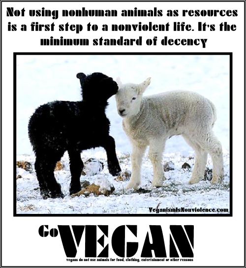 unpopular vegan essays Vegan parents who are vegan for the reason of respecting the interests of other  these little piggies had tofu  vegan skeptic unpopular vegan essays tim.