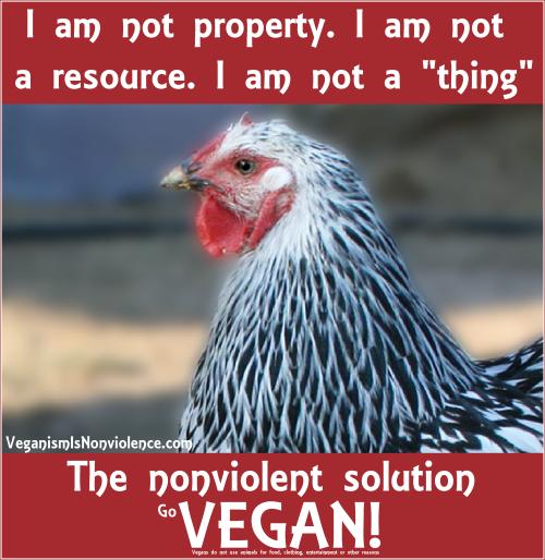 I am not property