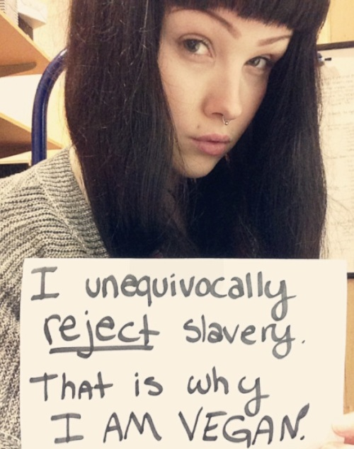 """Kelly """"I unequivocally reject slavery, that's why I'm vegan"""""""