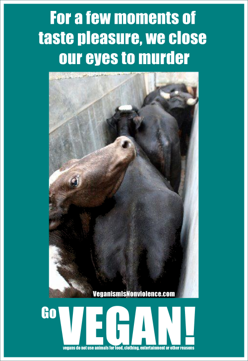 We close our eyes to murder