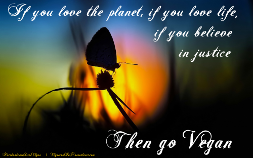 If you love the planet