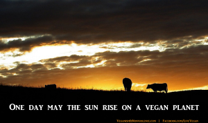 may the sun rise on a vegan planet2