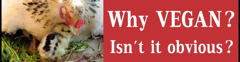 unpopular vegan essays Basic economics and four types of advocacy labels: dan cudahy, speciesism, unpopular vegan essays, vegan advocacy and education, vegan india 2 comments.