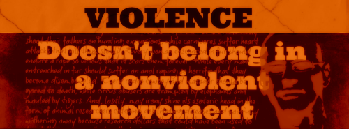 Doesn't belong in a nonviolent movement12